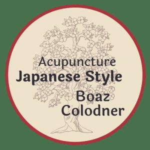 איך למדתי לאהוב רפואה יפנית?